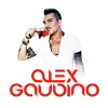 Hits Collection - 2013 - Alex Gaudino
