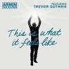 This Is What It Feels Like (Remixes) (Ft Trevor Guthrie) - 2013 - Armin van Buuren