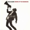Waking Up The Neighbours - 1991 - Bryan Adams