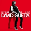 Nothing But The Beat (US Edition) - 2011 - David Guetta