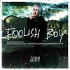 Foolish Boy - 2012 - Emma Hewitt