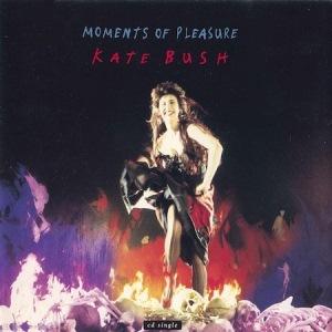 Moments Of Pleasure [CDS]