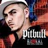 Money Is Still A Major Issue - 2005 - Pitbull