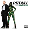 Rebelution - 2009 - Pitbull