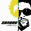 Clothes Drop - 2005 - Shaggy