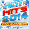 Winter Hits 2014 - 2014 - V.A