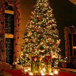 Christmas VA